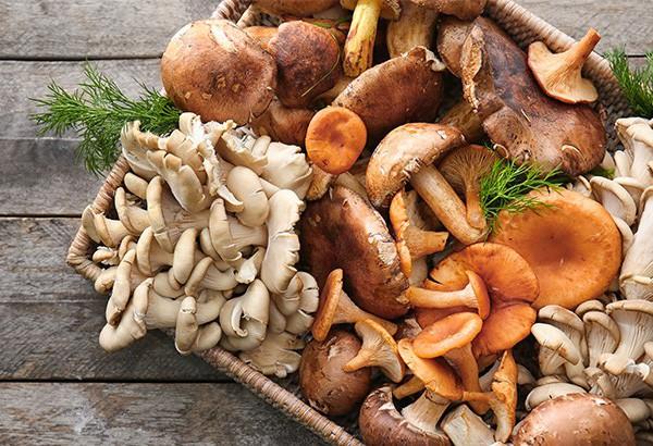 Nấm là loại thực phẩm có nhiều dưỡng chất tốt cho xương khớp.